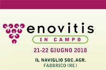 Enovitis in Campo 2018